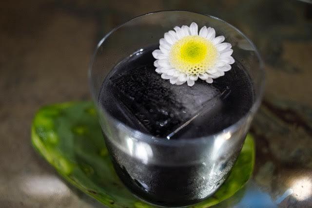 Obsidian by Casa Dragones at Tasting Room