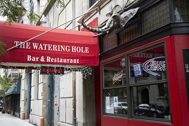 The Watering Hole Atlanta Falcons Bar