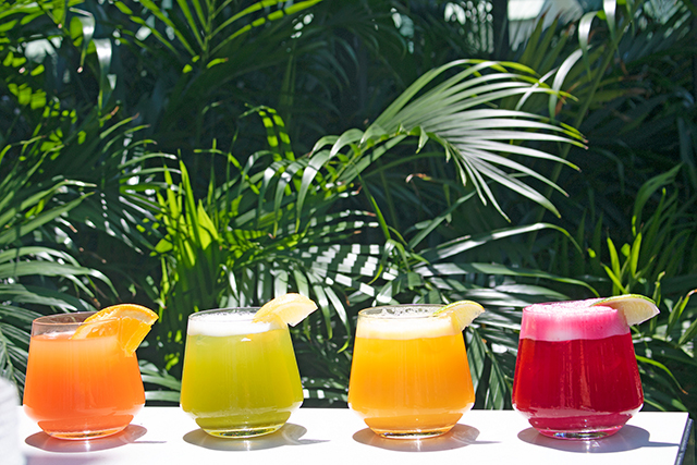 12-bottomless-cold-pressed-margaritas-at-planta-south-beach