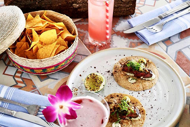 miami-spice-at-diez-y-seis-steak-tacos-paired-with-two-signature-cocktails-chapulin-colorado-_-flor-de-jamaica