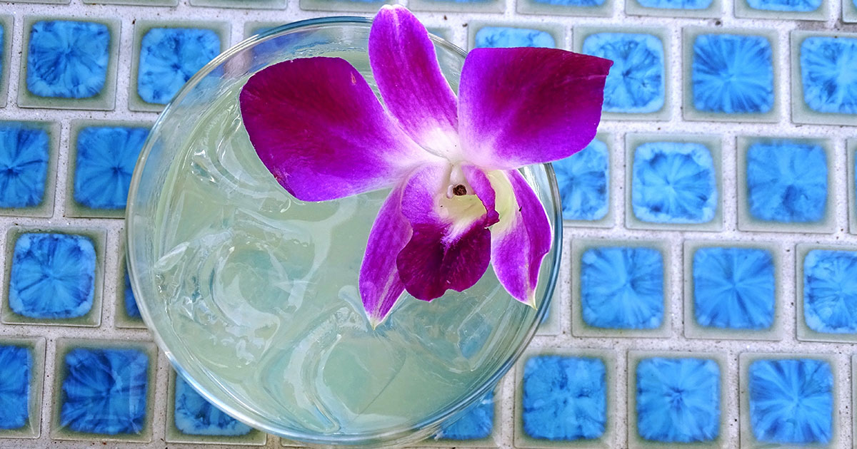 drink-this-now--when-she-sings-cocktail-at-area-31-miami-kimpton-epic-doug-kincaid6-featured