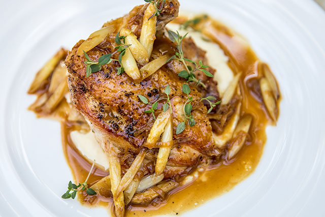 chicken-culina