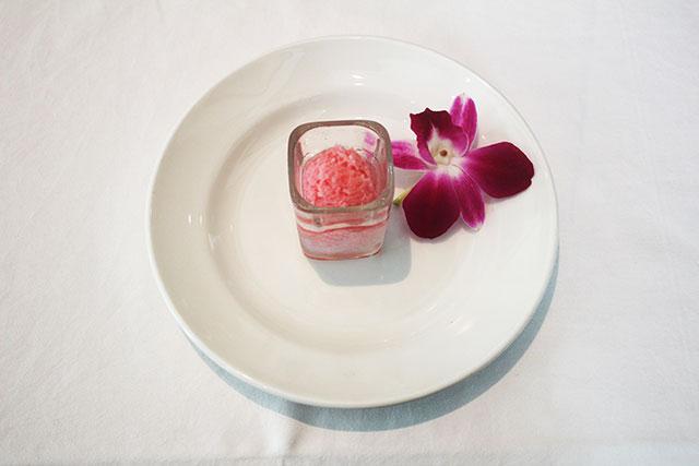 diplomat-prime-pink-champagne-sorbet