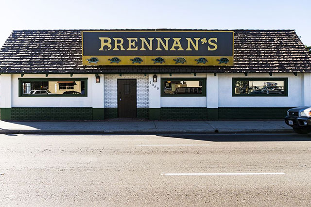 brennans_turtles7.0