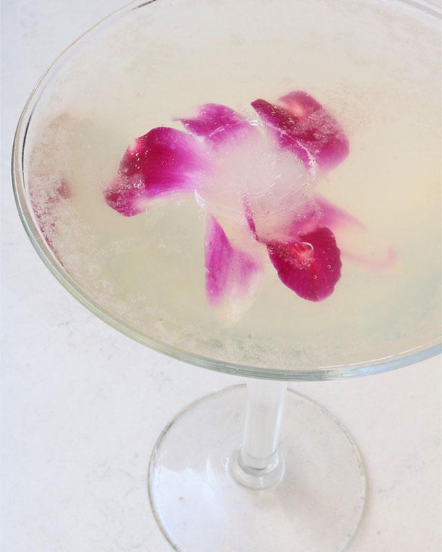 black-orchi-martini