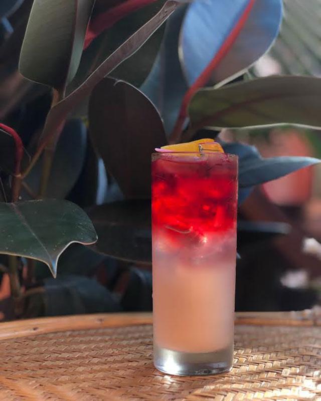 springtime-drinks-miami-scarlett-begonia-lemonade-at-parcela